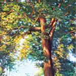 treeh_r