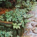 woodsh_r